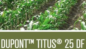 Titus 25 DF