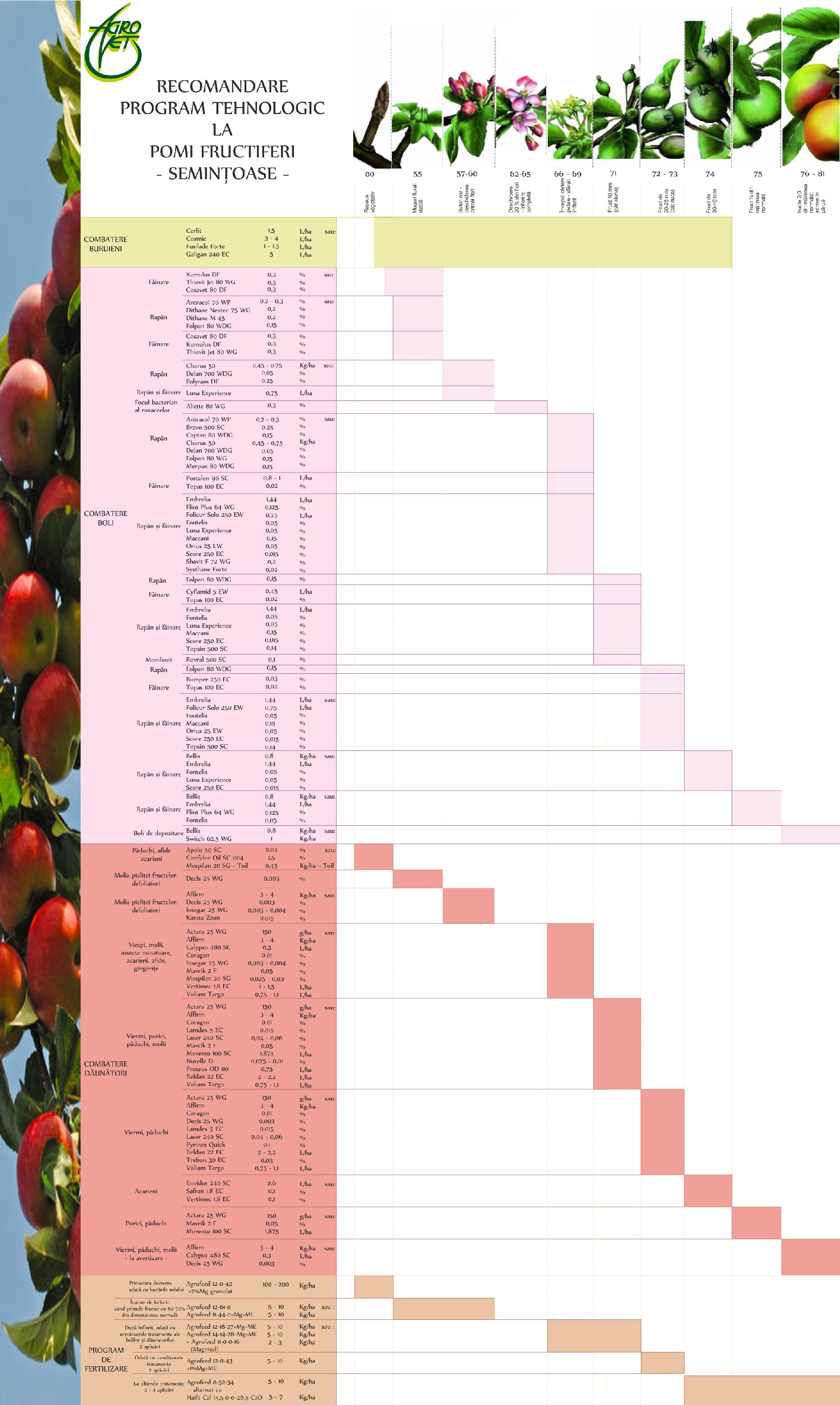 pomi-fructiferi-semintoase-2017