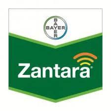 Zantara 216 EC