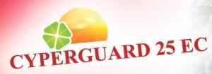 Cyperguard