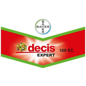 decis-expert-300x300