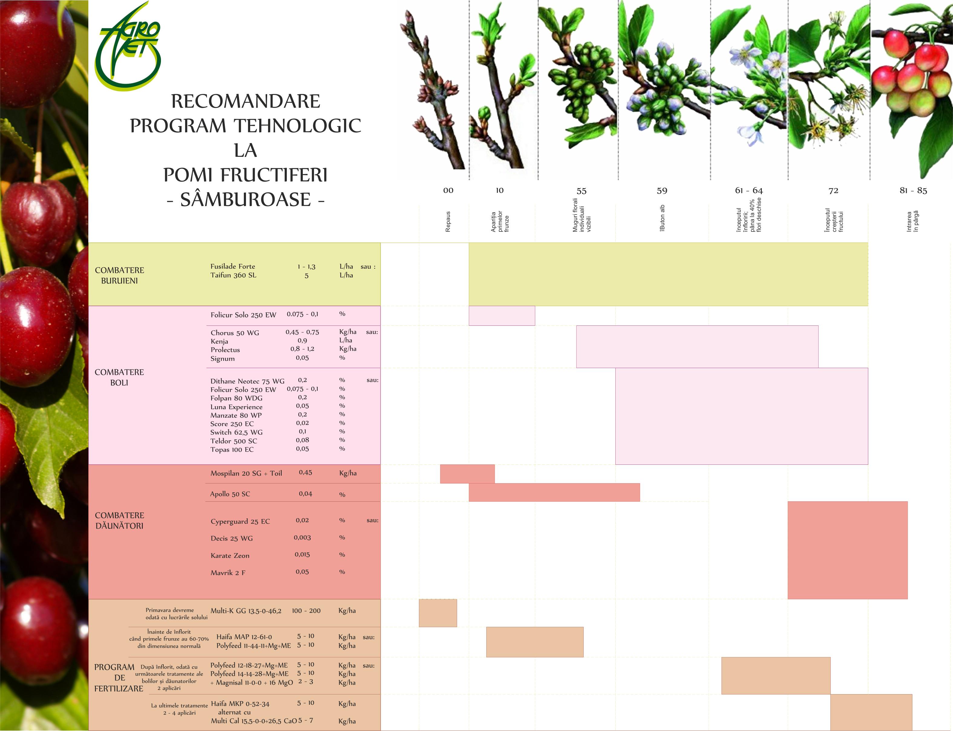 Program tehn Pomi fructiferi - samburoase